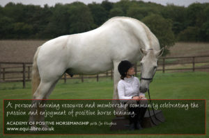 The Academy of Positive Horsemanship