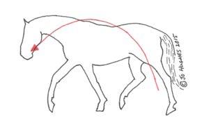 Balanced Horse
