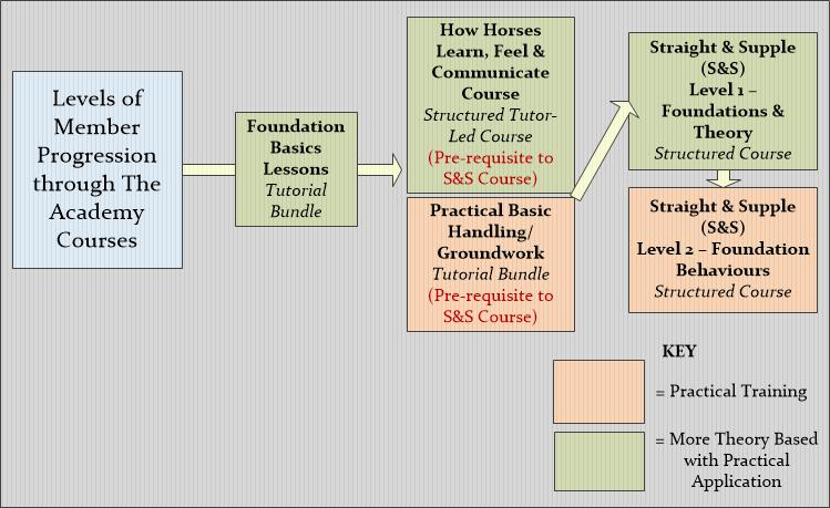 Academy Course Structure